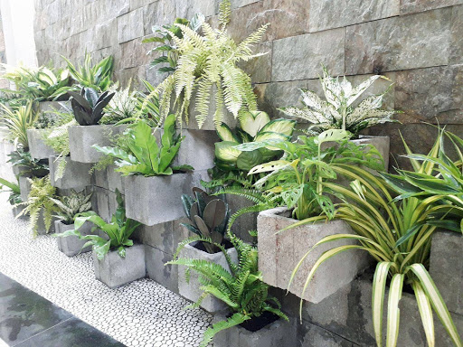 Thiết kế thi công tiểu cảnh sân vườn - Gọi 0968669776