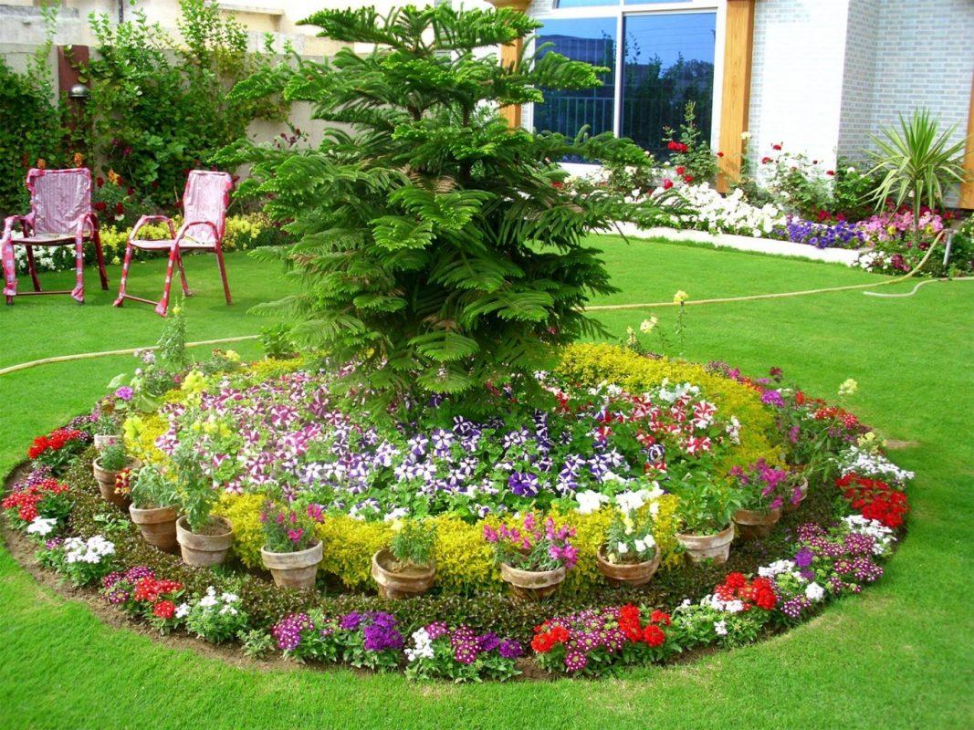 trang trí khu vườn bằng chậu hoa nhỏ