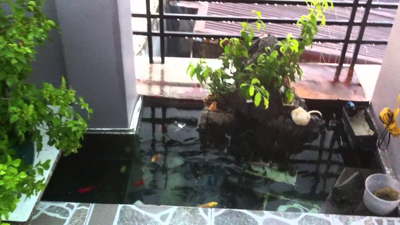 Hình ảnh mẫu tiểu cảnh ban công sân thượng có hồ cá koi đẹp ấn tượng