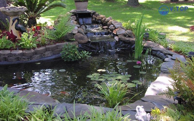 tiểu cảnh hồ cá sân vườn