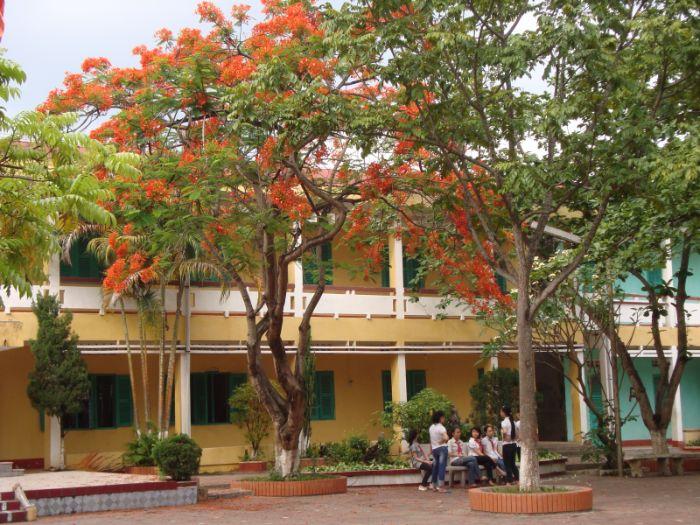 Những yêu cầu khi thiết kế khuôn viên trường tiểu học