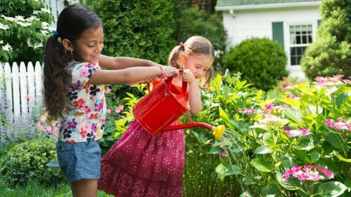 Trồng cây xanh trong nhà giúp giảm dị ứng và hen suyễn