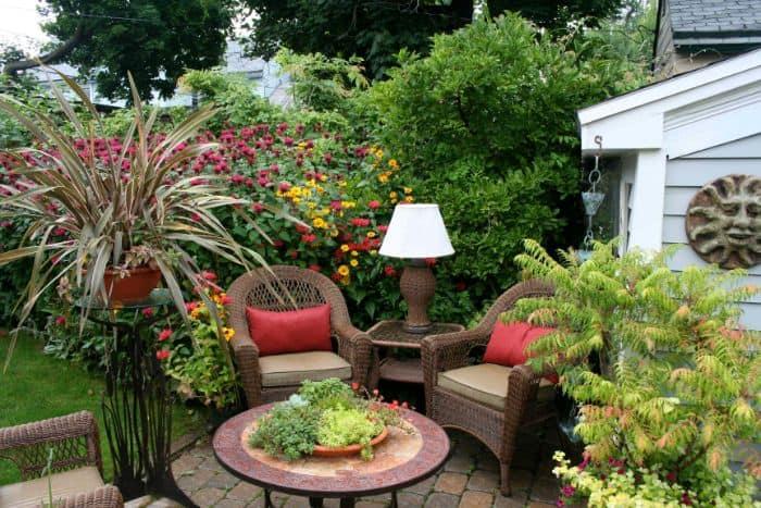 Khám phá những loại cây cảnh nên trồng trong vườn
