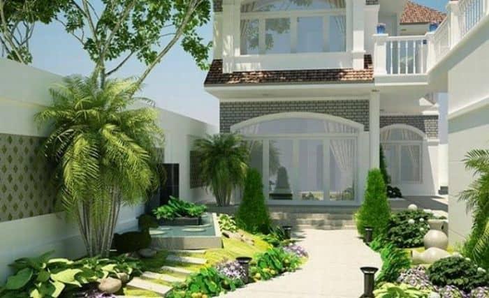 Cây trúc, tre cảnh chính là một trong những loại cây nên trồng trước nhà mà bạn không nên bỏ qua