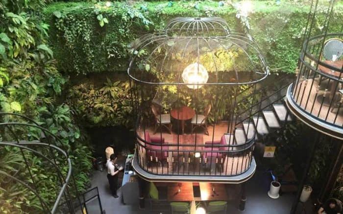 Terrace Cafe giống như một khu vườn trong thành phố lớn