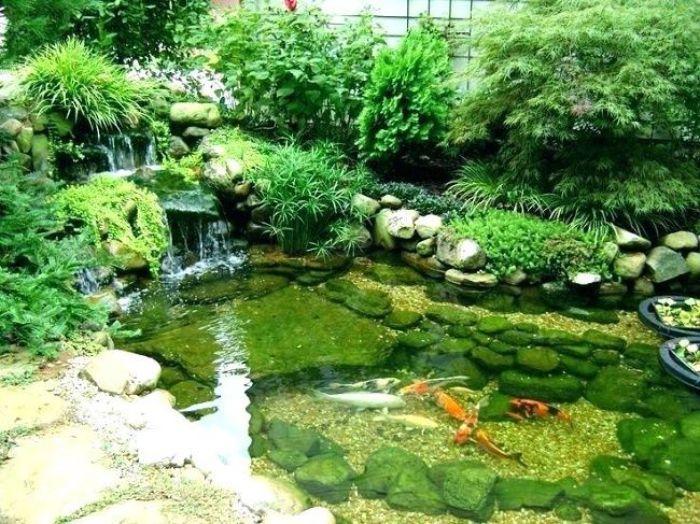 Bể cá cảnh là một trong những hạng mục thiết kế và thi công sân vườn