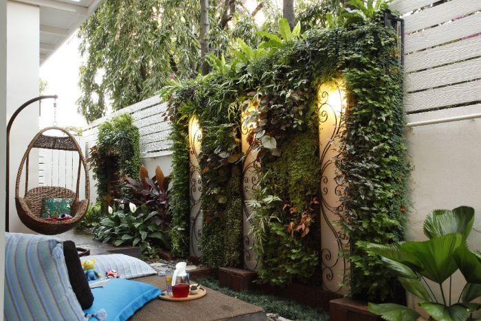 Lợi ích của việc trồng cây trên tường