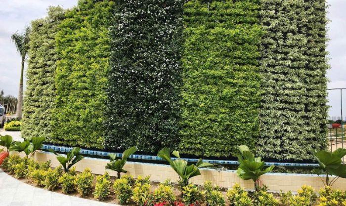 Địa chỉ trồng cây trên tường uy tín