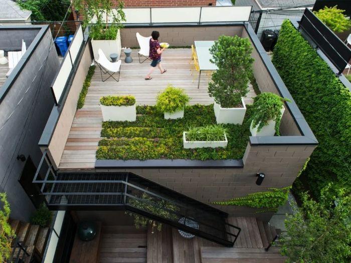 Thiết kế sân thượng nhà phố với cây xanh