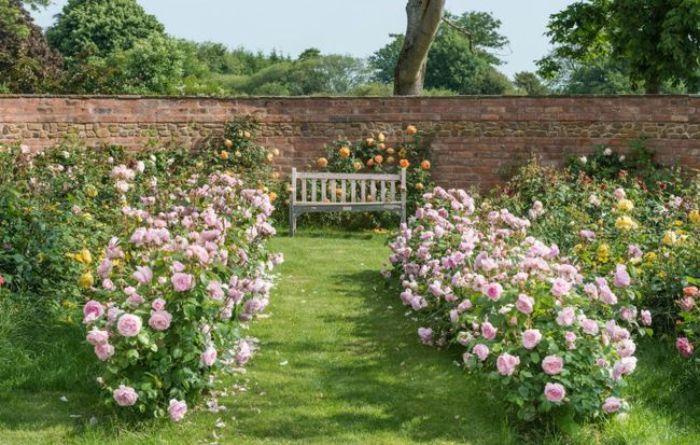 Sân vườn trước nhà có khả năng quyết định đến tình thẩm mỹ của toàn bộ căn nhà