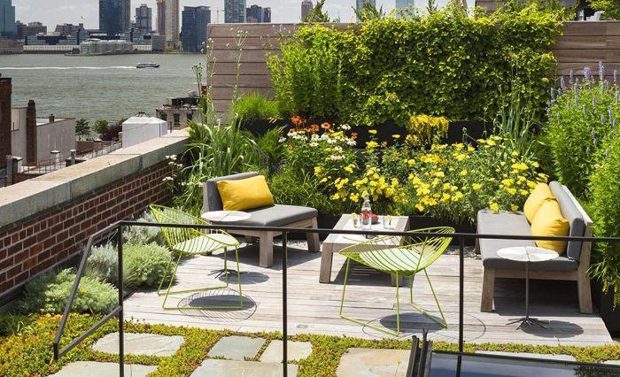 Lựa chọn cây trồng để thiết kế tiểu cảnh sân thượng
