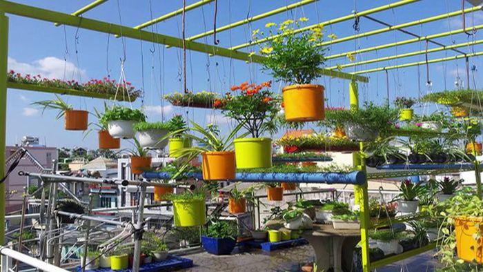 Lợi ích của vườn treo trên sân thượng